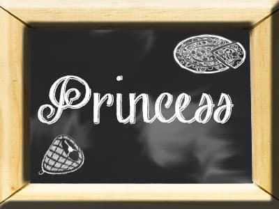 friggitrice ad aria princess